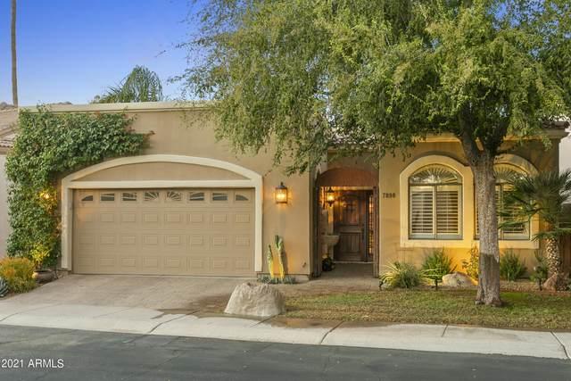 7898 E Clinton Street, Scottsdale, AZ 85260 (MLS #6311644) :: Keller Williams Realty Phoenix