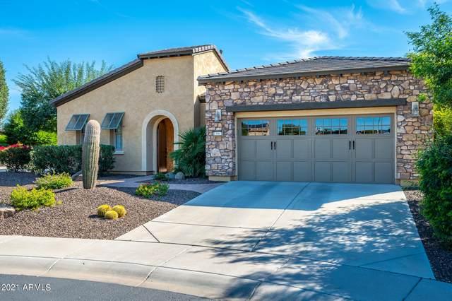 13067 W Evergreen Terrace, Peoria, AZ 85383 (MLS #6311646) :: The Copa Team | The Maricopa Real Estate Company