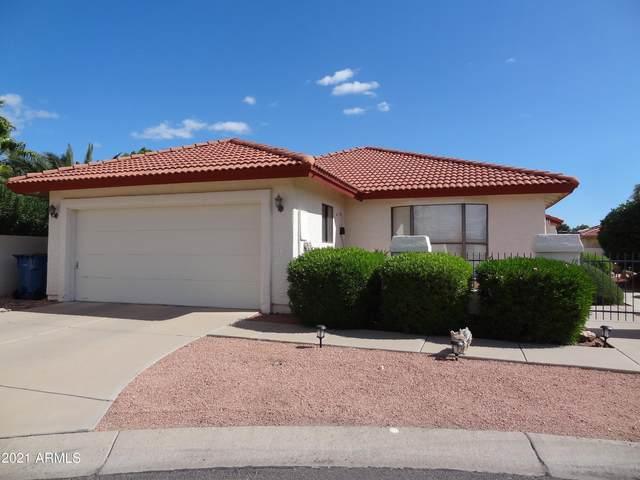 26033 S Burnaby Court, Sun Lakes, AZ 85248 (MLS #6311647) :: The Copa Team | The Maricopa Real Estate Company