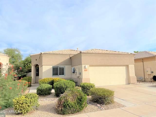 6378 W Blackhawk Drive, Glendale, AZ 85308 (MLS #6311660) :: The Copa Team   The Maricopa Real Estate Company
