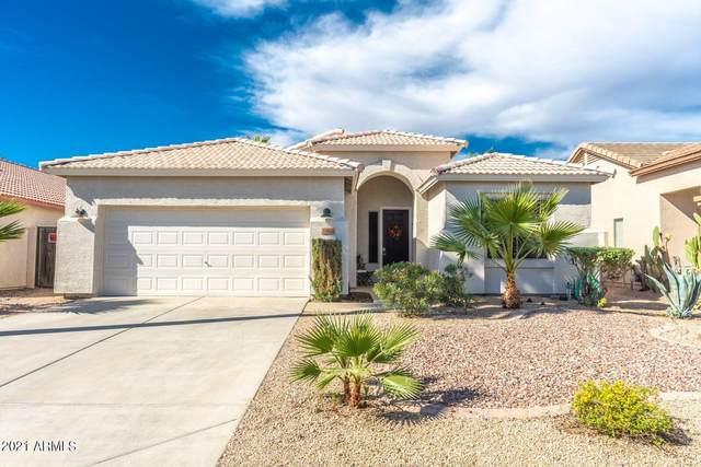30498 N Royal Oak Way, San Tan Valley, AZ 85143 (MLS #6311707) :: My Home Group