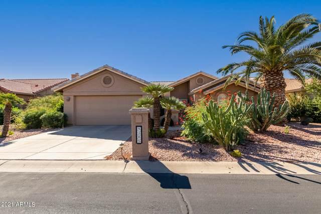 9305 E Nacoma Drive, Sun Lakes, AZ 85248 (MLS #6311723) :: Synergy Real Estate Partners