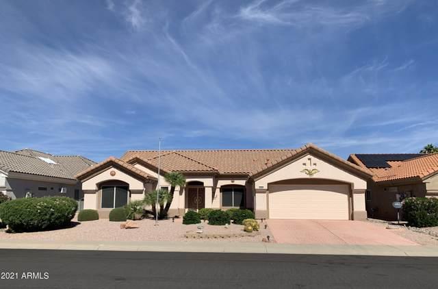 14230 W Pecos Lane, Sun City West, AZ 85375 (MLS #6311729) :: Nate Martinez Team