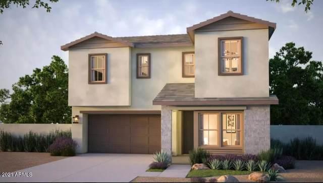6416 N 17th Place, Phoenix, AZ 85016 (MLS #6311747) :: Howe Realty