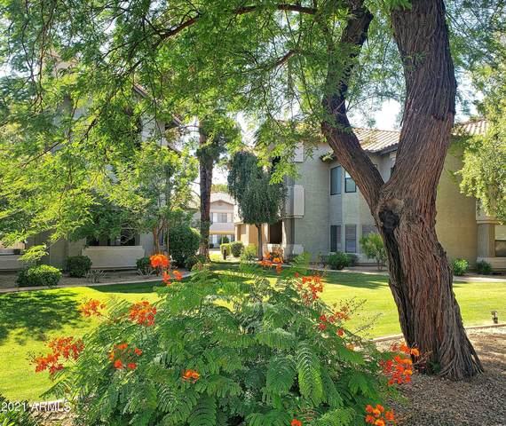 9600 N 96TH Street #144, Scottsdale, AZ 85258 (MLS #6311753) :: The Ethridge Team