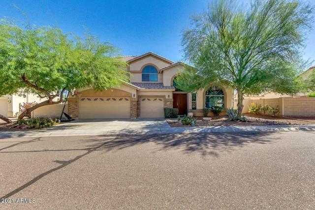 7421 S 25TH Lane, Phoenix, AZ 85041 (MLS #6311756) :: Howe Realty