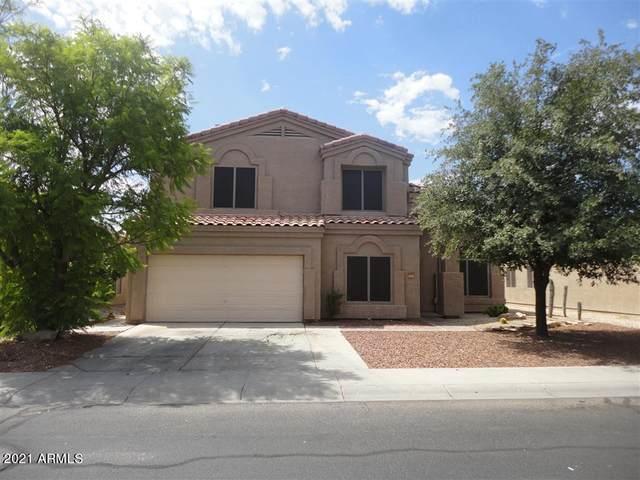 13009 W Gelding Drive, El Mirage, AZ 85335 (MLS #6311784) :: Klaus Team Real Estate Solutions