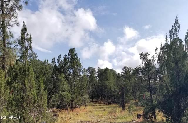 3227 Jeep Trail, Overgaard, AZ 85933 (MLS #6311799) :: D & R Realty LLC