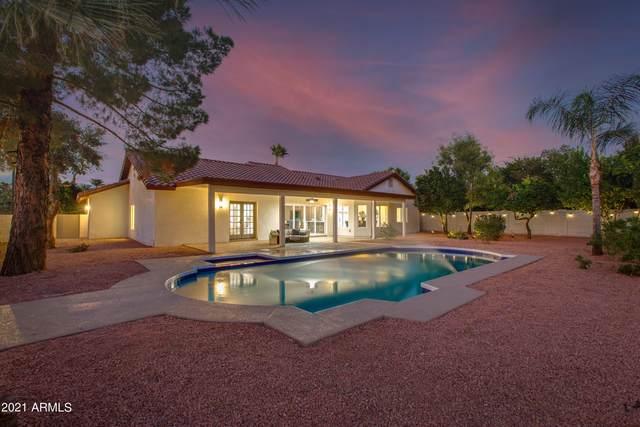 10207 E San Salvador Drive, Scottsdale, AZ 85258 (MLS #6311827) :: The Dobbins Team