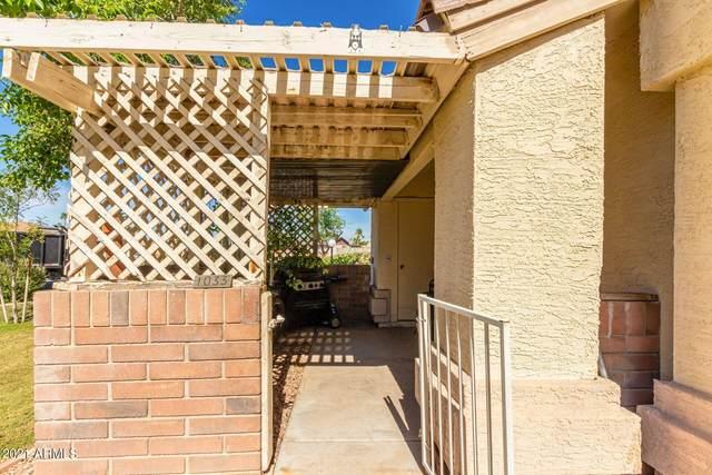 2201 N Comanche Drive #1033, Chandler, AZ 85224 (MLS #6311832) :: Keller Williams Realty Phoenix