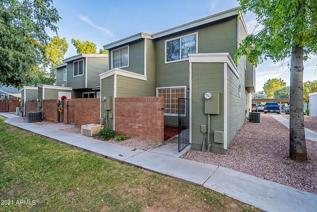 2301 E University Drive #259, Mesa, AZ 85213 (MLS #6311844) :: Yost Realty Group at RE/MAX Casa Grande