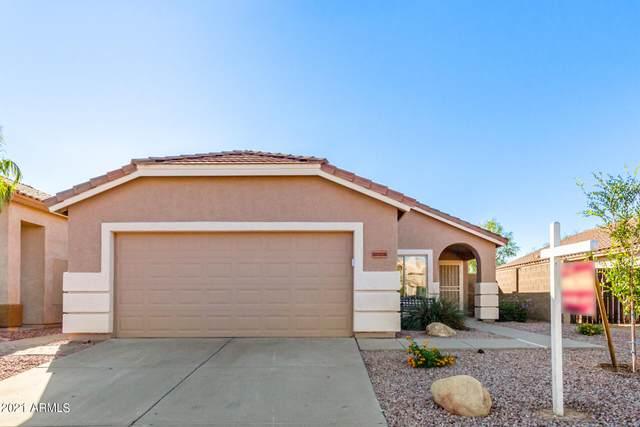 18328 N 147TH Drive N, Surprise, AZ 85374 (MLS #6311882) :: D & R Realty LLC