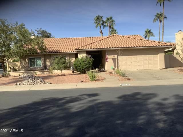 1526 W Boa Vista Drive, Gilbert, AZ 85233 (MLS #6311883) :: D & R Realty LLC