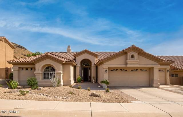1367 E Desert Broom Way, Phoenix, AZ 85048 (MLS #6311893) :: The Daniel Montez Real Estate Group