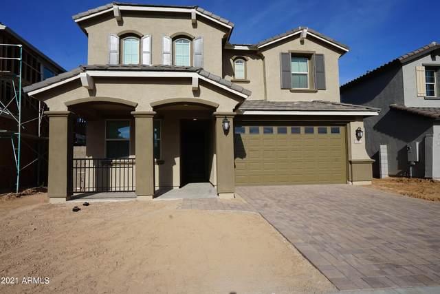 2832 W Bridger Drive, San Tan Valley, AZ 85142 (MLS #6311905) :: Keller Williams Realty Phoenix