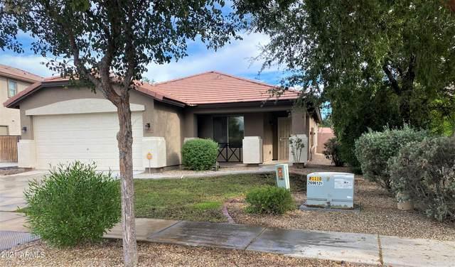 11317 W Lincoln Street, Avondale, AZ 85323 (MLS #6311914) :: The Garcia Group