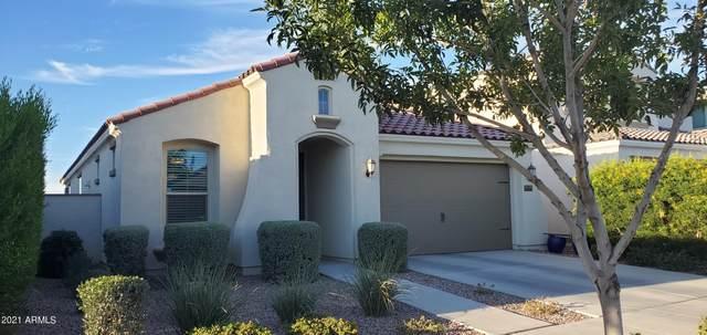 10518 E Corbin Avenue, Mesa, AZ 85212 (MLS #6311920) :: Scott Gaertner Group