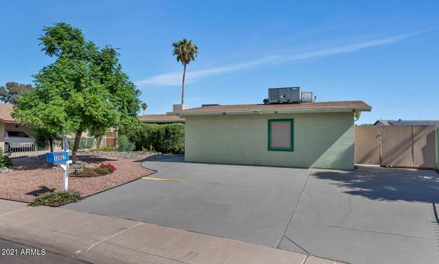 12637 N Columbine Drive, Phoenix, AZ 85029 (MLS #6311943) :: The Riddle Group