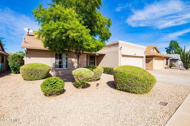 10110 W Reade Avenue, Glendale, AZ 85307 (MLS #6311978) :: CANAM Realty Group