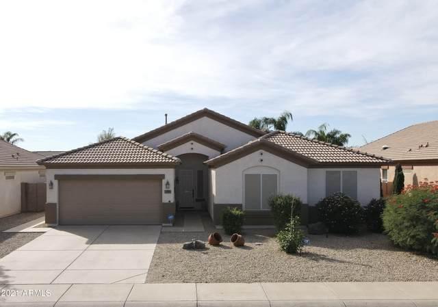 16359 W Central Street, Surprise, AZ 85388 (MLS #6311989) :: Selling AZ Homes Team