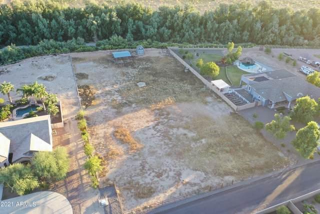 22323 E Via De Palmas, Queen Creek, AZ 85142 (MLS #6312036) :: Kepple Real Estate Group