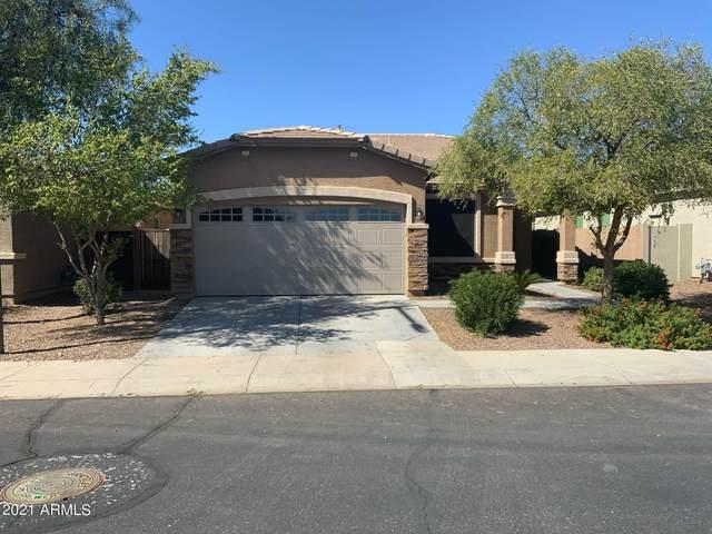 15696 N 182ND Avenue, Surprise, AZ 85388 (MLS #6312094) :: Scott Gaertner Group