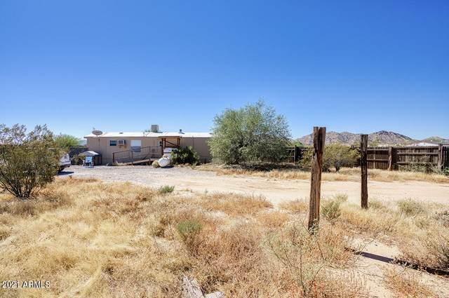 55551 W La Barranca Drive, Maricopa, AZ 85139 (MLS #6312106) :: Service First Realty