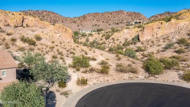 8960 W Red Fox Road, Peoria, AZ 85383 (MLS #6312123) :: neXGen Real Estate