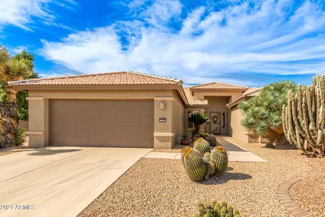 3582 N 162ND Lane, Goodyear, AZ 85395 (MLS #6312156) :: Selling AZ Homes Team