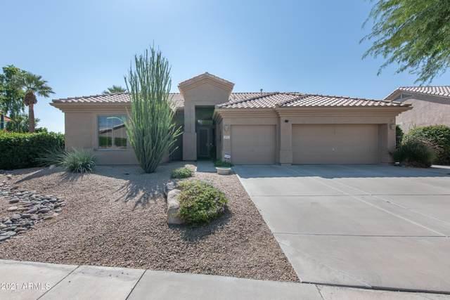 2772 N 136TH Drive, Goodyear, AZ 85395 (MLS #6312182) :: The Garcia Group