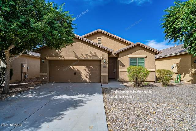 10558 E Sunflower Lane, Florence, AZ 85132 (MLS #6312245) :: The Property Partners at eXp Realty