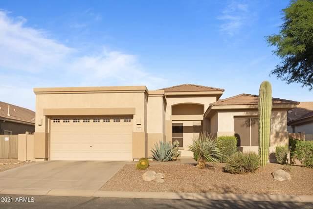 2517 N Raven Circle, Mesa, AZ 85207 (MLS #6312278) :: My Home Group
