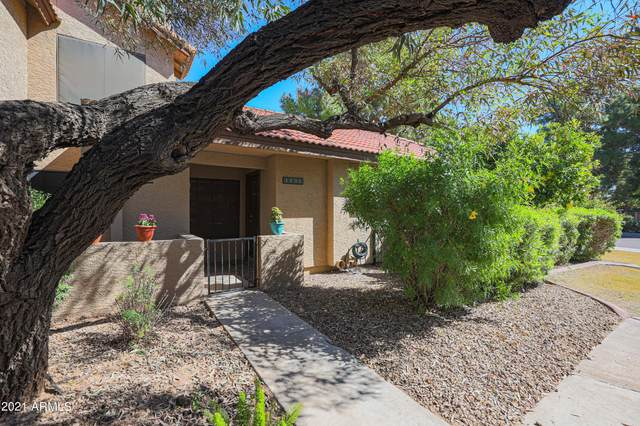 8625 E Belleview Place #1131, Scottsdale, AZ 85257 (MLS #6312342) :: neXGen Real Estate