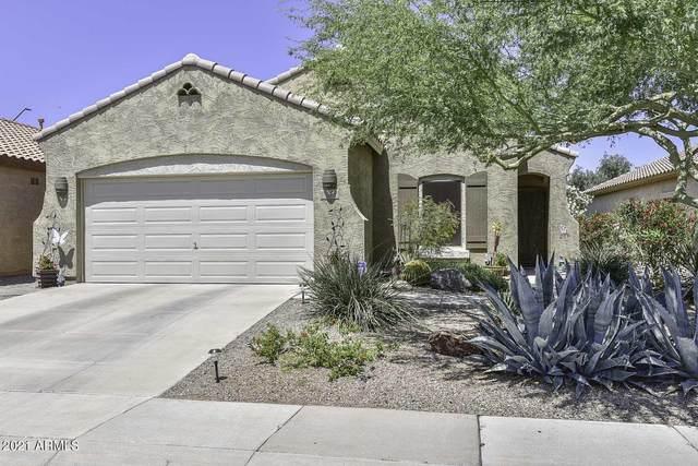 17156 W Saguaro Lane, Surprise, AZ 85388 (MLS #6312358) :: Scott Gaertner Group