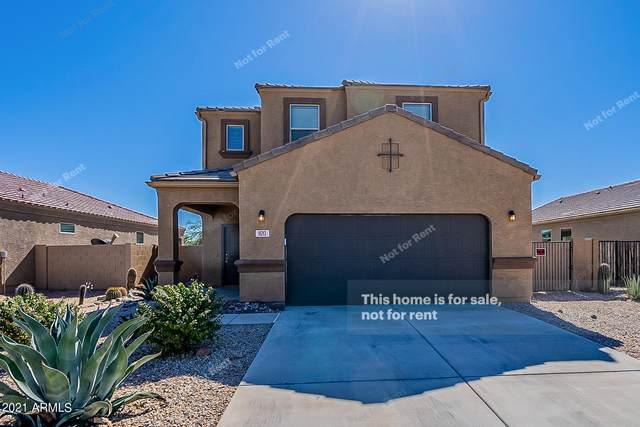 11213 E Cliffrose Lane, Florence, AZ 85132 (MLS #6312396) :: The Property Partners at eXp Realty