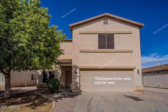 1204 E Dust Devil Drive, San Tan Valley, AZ 85143 (MLS #6312404) :: Klaus Team Real Estate Solutions