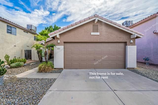 3931 E Wescott Drive, Phoenix, AZ 85050 (MLS #6312405) :: Yost Realty Group at RE/MAX Casa Grande