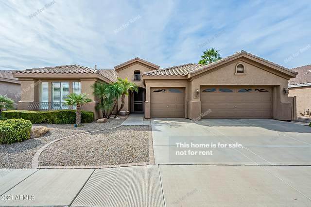 701 W Oriole Way, Chandler, AZ 85286 (MLS #6312409) :: neXGen Real Estate
