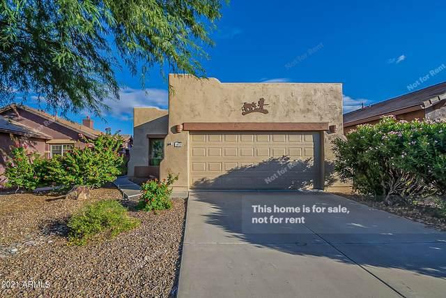 10838 E Secret Canyon Road, Gold Canyon, AZ 85118 (MLS #6312413) :: The Property Partners at eXp Realty