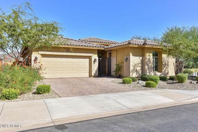 7226 W Miner Trail, Peoria, AZ 85383 (MLS #6312423) :: The Daniel Montez Real Estate Group