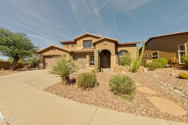 2946 W Sousa Drive, Anthem, AZ 85086 (MLS #6312446) :: Elite Home Advisors