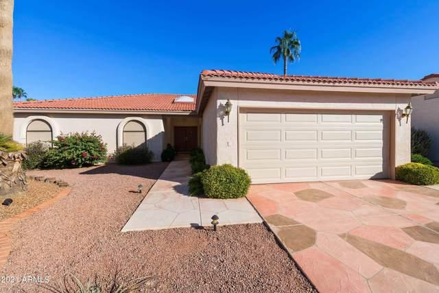 10910 E Sunnydale Drive, Sun Lakes, AZ 85248 (MLS #6312454) :: neXGen Real Estate
