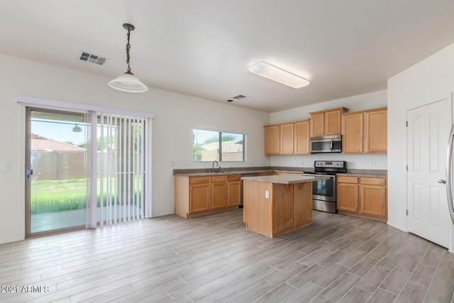 11710 N 152ND Drive, Surprise, AZ 85379 (MLS #6312520) :: Scott Gaertner Group