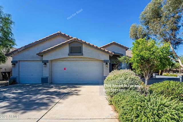 3104 S Del Rancho, Mesa, AZ 85212 (MLS #6312525) :: Kepple Real Estate Group