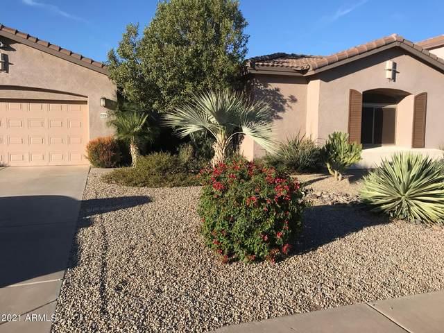 21252 E Alyssa Road, Queen Creek, AZ 85142 (MLS #6312547) :: The Daniel Montez Real Estate Group