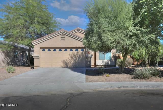 43652 W Magnolia Road, Maricopa, AZ 85138 (MLS #6312645) :: The Daniel Montez Real Estate Group