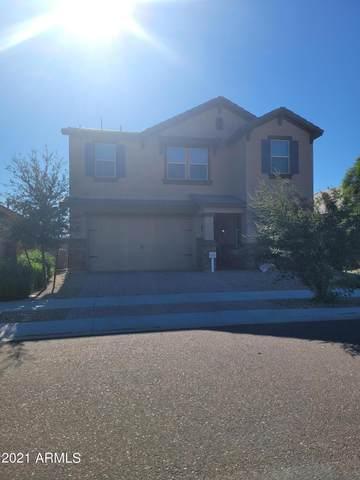 3359 S 173RD Drive, Goodyear, AZ 85338 (MLS #6312669) :: neXGen Real Estate