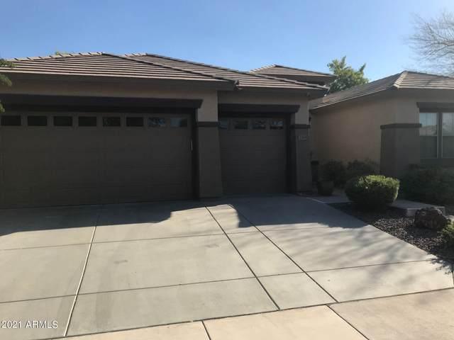 2263 W Clearview Trail, Phoenix, AZ 85086 (MLS #6312693) :: The Daniel Montez Real Estate Group