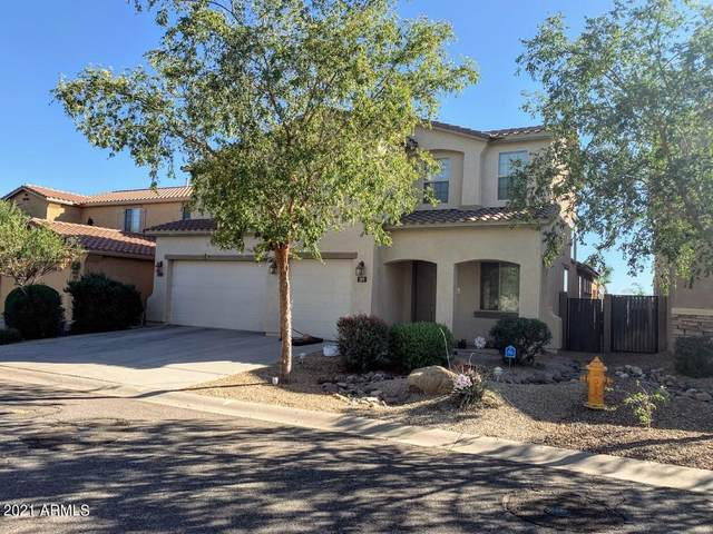 389 E Pasture Canyon Drive, San Tan Valley, AZ 85143 (MLS #6312700) :: The Property Partners at eXp Realty