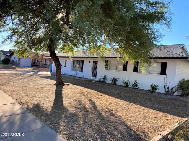 3115 W Gelding Drive, Phoenix, AZ 85053 (MLS #6312714) :: The Daniel Montez Real Estate Group